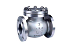 SS CHECK VALVE FLANGED